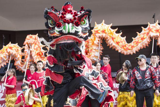 Edinburgh Carnival Festival 2019-59 2